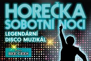 Horečka sobotní noci muzikál Divadlo Kalich