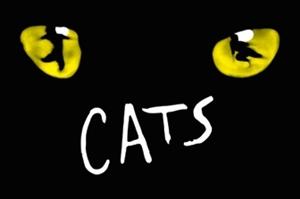 """Pozvánka na konkurz do nového nastudování muzikálu """"CATS – KOČKY"""" v Městském divadle Brno"""