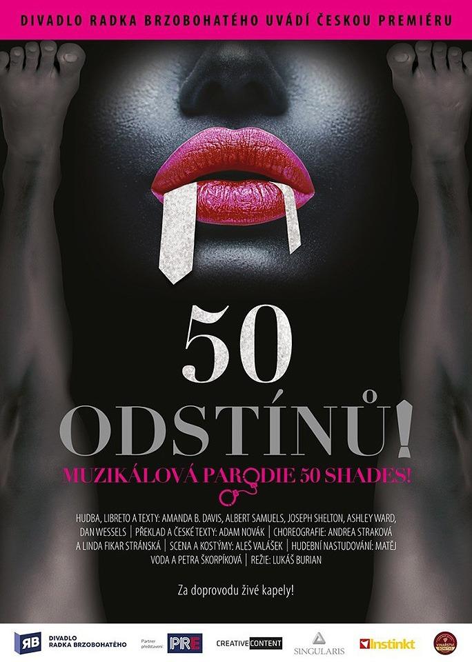 50 ODSTINŮ muzikál Divadlo Radka Brzohotého shades šedi