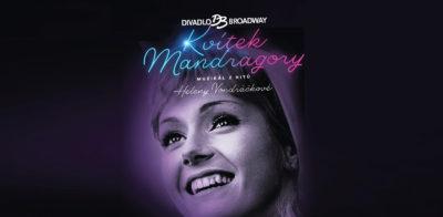 Konkurz do hit muzikálu s písněmi Heleny Vondráčkové KVÍTEK MANDRAGORY