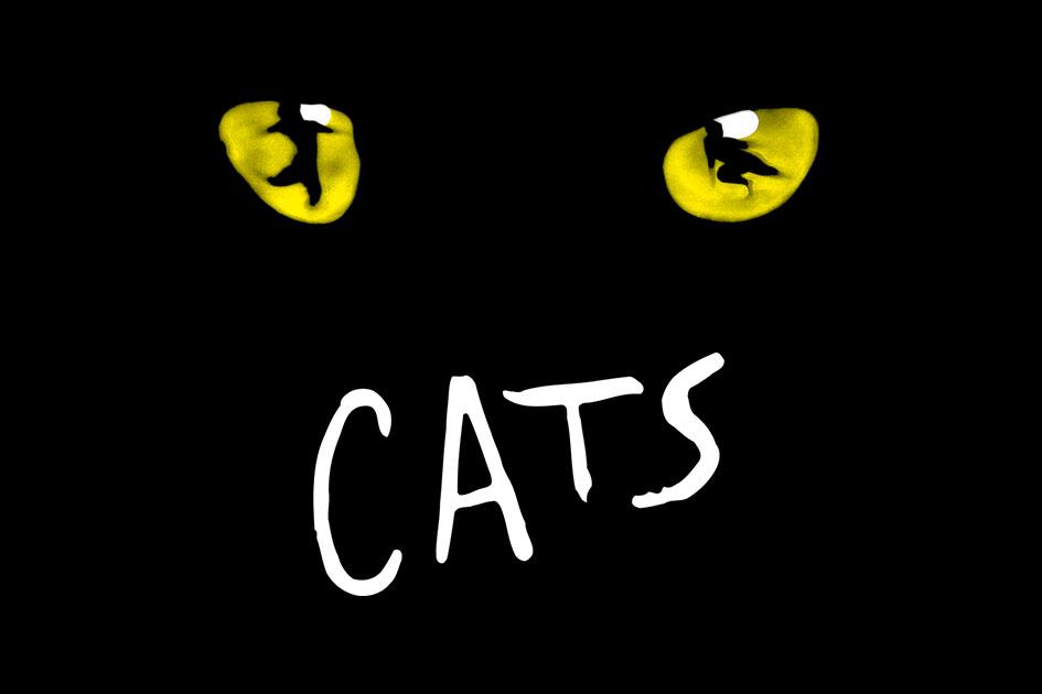 Konkurz do ostravské inscenace muzikálu CATS (Kočky)